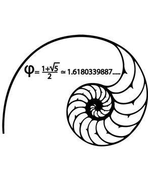 Fibonacci spiral sticker λεπτομέρια